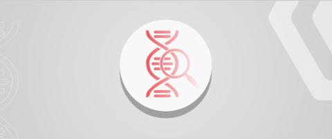 PCR დიაგნოსტიკა